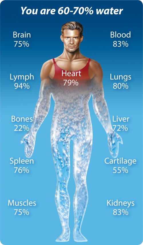 Your body is mostly water