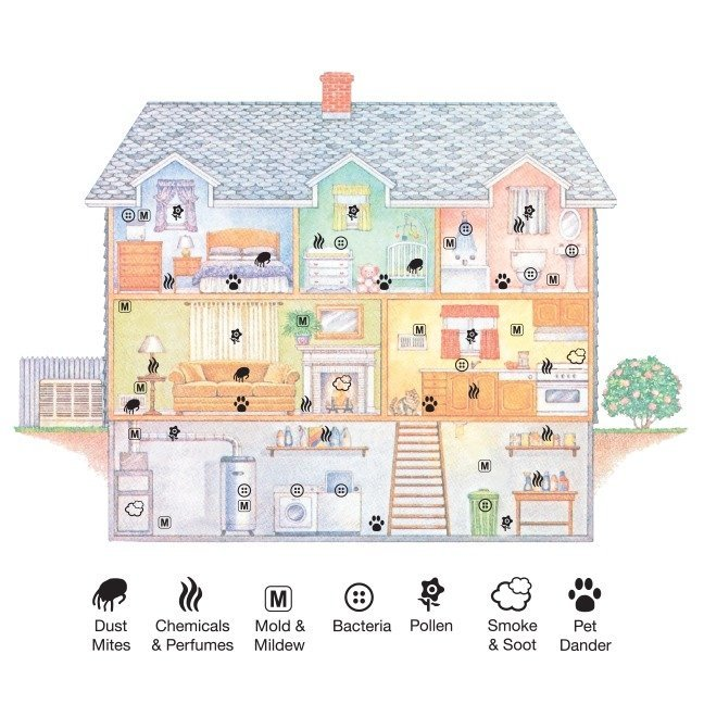 house_pollutants